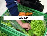 amap-thum.jpg