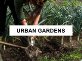 urban-garden-thum.jpg