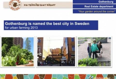 feature pic gothenburg