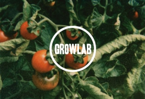 featured pic oslo growlab
